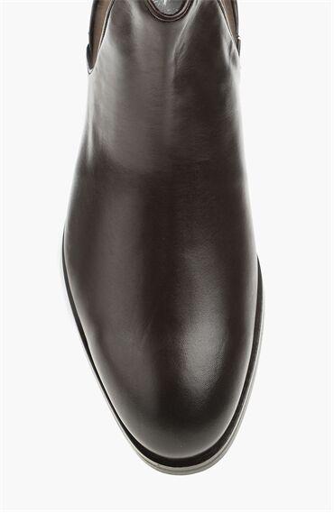 Kahverengi Erkek Bot
